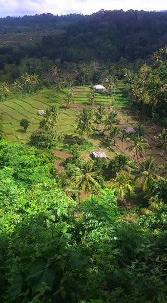 senaru-village
