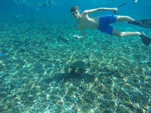 Snorkeling On ,Gili Islands